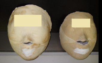 長い顔から小さな丸形が人気